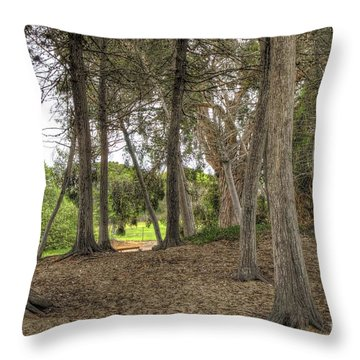 Past The Beach And Through The Trees Throw Pillow