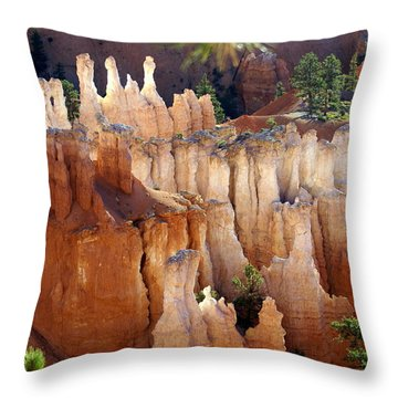 Pastel Bryce Throw Pillow by Marty Koch