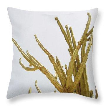 Pastel Cactus- Art By Linda Woods Throw Pillow