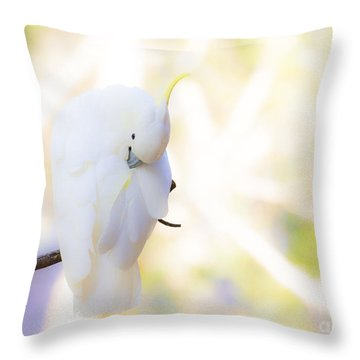 Pastel Cockatoo Throw Pillow by Avalon Fine Art Photography