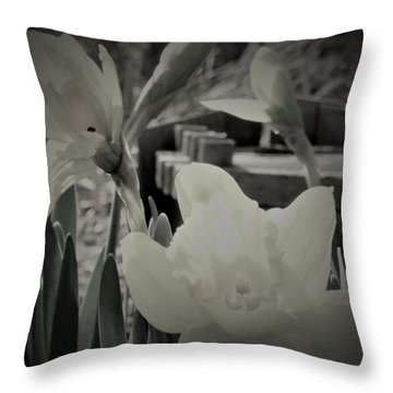 Pastel Daffodil Throw Pillow