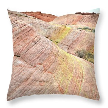 Throw Pillow featuring the photograph Pastel Dunes In Valley Of Fire by Ray Mathis