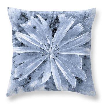 Pastel Purple Blue Daisy Bw Throw Pillow