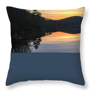 Pastel Reflections With Pine Tree Throw Pillow