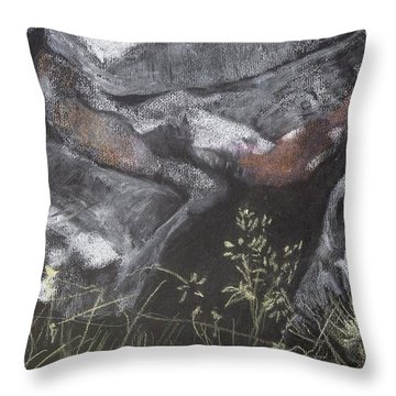 Pastel Stones And Plants On Black Throw Pillow