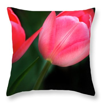 Throw Pillow featuring the photograph Pastel Tulips by David Millenheft