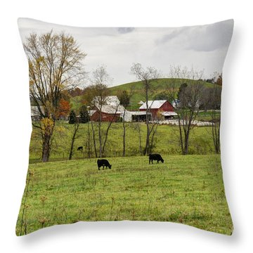 Throw Pillow featuring the photograph Pastoral by Larry Ricker