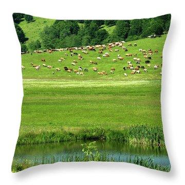 Pasture And Lake Throw Pillow