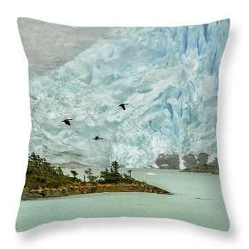 Throw Pillow featuring the photograph Patagonia Glacier by Alan Toepfer