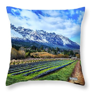 Landscape With Mountains And Farmlands In The Argentine Patagonia Throw Pillow