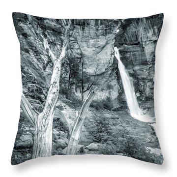 Patagonian Waterfall Throw Pillow by Andrew Matwijec