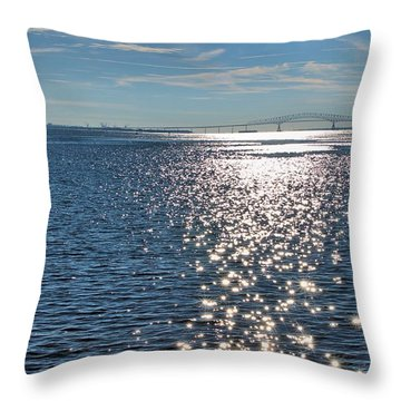Patapsco River  Throw Pillow