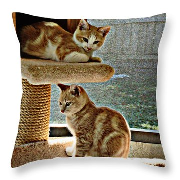 Patch And Dom Throw Pillow