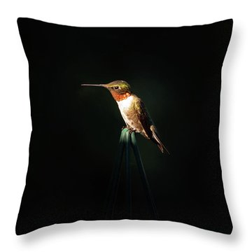 Patch Of Morning Sun Throw Pillow