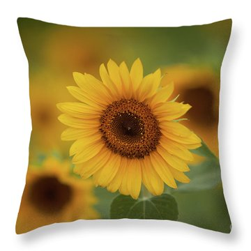 Patch Of Sunflowers Throw Pillow