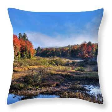 Throw Pillow featuring the photograph Patches Of Fog At The Green Bridge by David Patterson