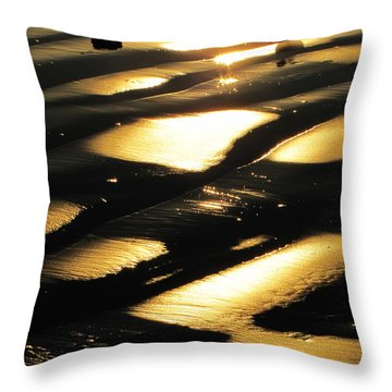 Patchwork Daytona Beach And Seagulls Throw Pillow