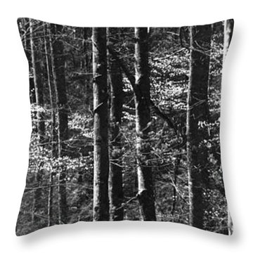 Patchwork Dogwood Panorama Bw Throw Pillow