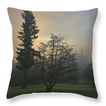 Patchy Morning Fog Throw Pillow