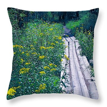 Path 4 Throw Pillow
