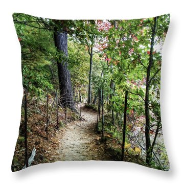 Path Along The Pond Throw Pillow