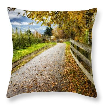 Path And Autumn Yellow Leaves In South Tyrol In Italy Throw Pillow