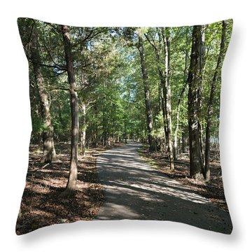 Path Around Lake Throw Pillow