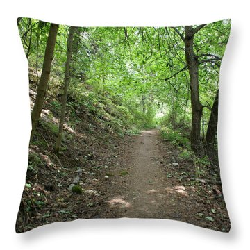 Throw Pillow featuring the photograph Path By The River by Ben Upham III