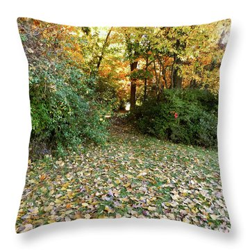 Path Entry Ahead Throw Pillow