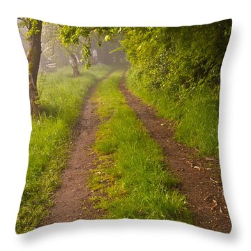 Path From Bullock Lake Throw Pillow