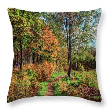 path in a beautiful country Park on a Sunny autumn day Throw Pillow