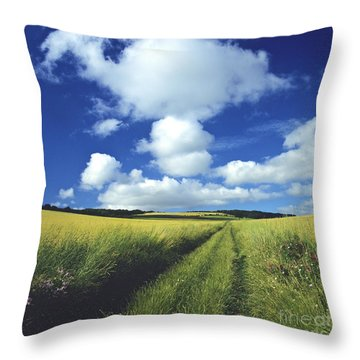 Path In A Countryside Throw Pillow by Bernard Jaubert
