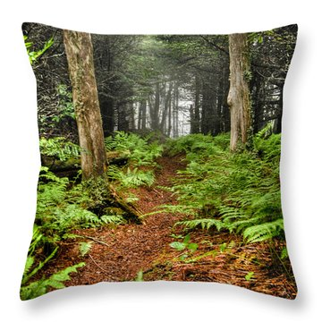 Path In The Ferns Throw Pillow