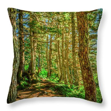 Path In The Trees Throw Pillow