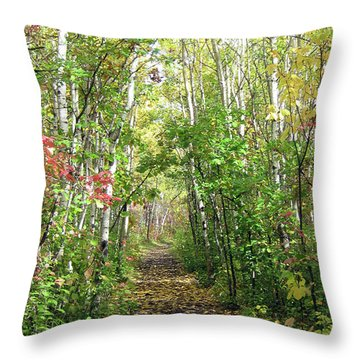 Path In The Woods 3 Throw Pillow