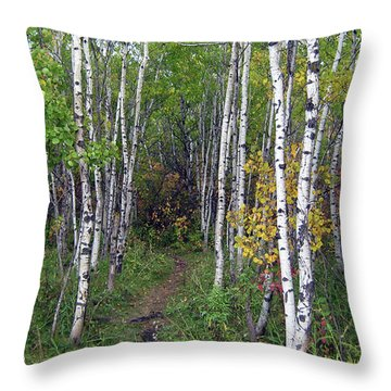 Path In The Woods 5 Throw Pillow