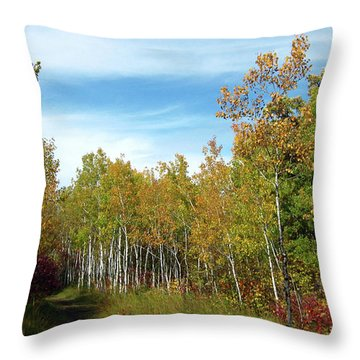 Path In The Woods 7 Throw Pillow
