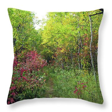 Path In The Woods 8 Throw Pillow