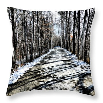Path In Winter Throw Pillow