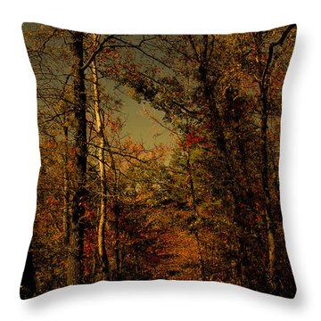 Path Into The Woods Throw Pillow by Nina Fosdick