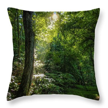 Path Lighting Throw Pillow