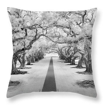 Path Of Dreams  Throw Pillow
