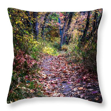 Path Of Leaves Throw Pillow