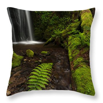 Path Of Life Throw Pillow by Mike Reid