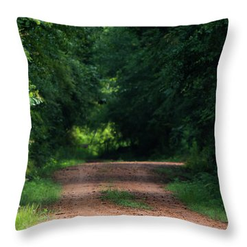 Throw Pillow featuring the photograph Path Of Light Horizontal by Shelby Young
