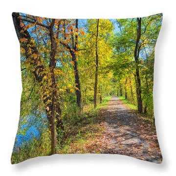 Path Through Fall Throw Pillow