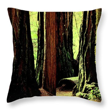 Path Through The Forest Edge . 7d5432 Throw Pillow