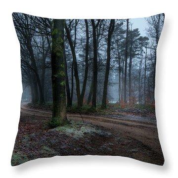 Path Through The Forrest Throw Pillow