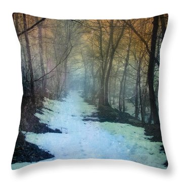 Path Through The Woods In Winter At Sunset Throw Pillow