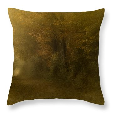 Path To Autumn Throw Pillow by Richard Cummings
